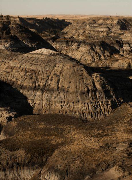 front-terrain